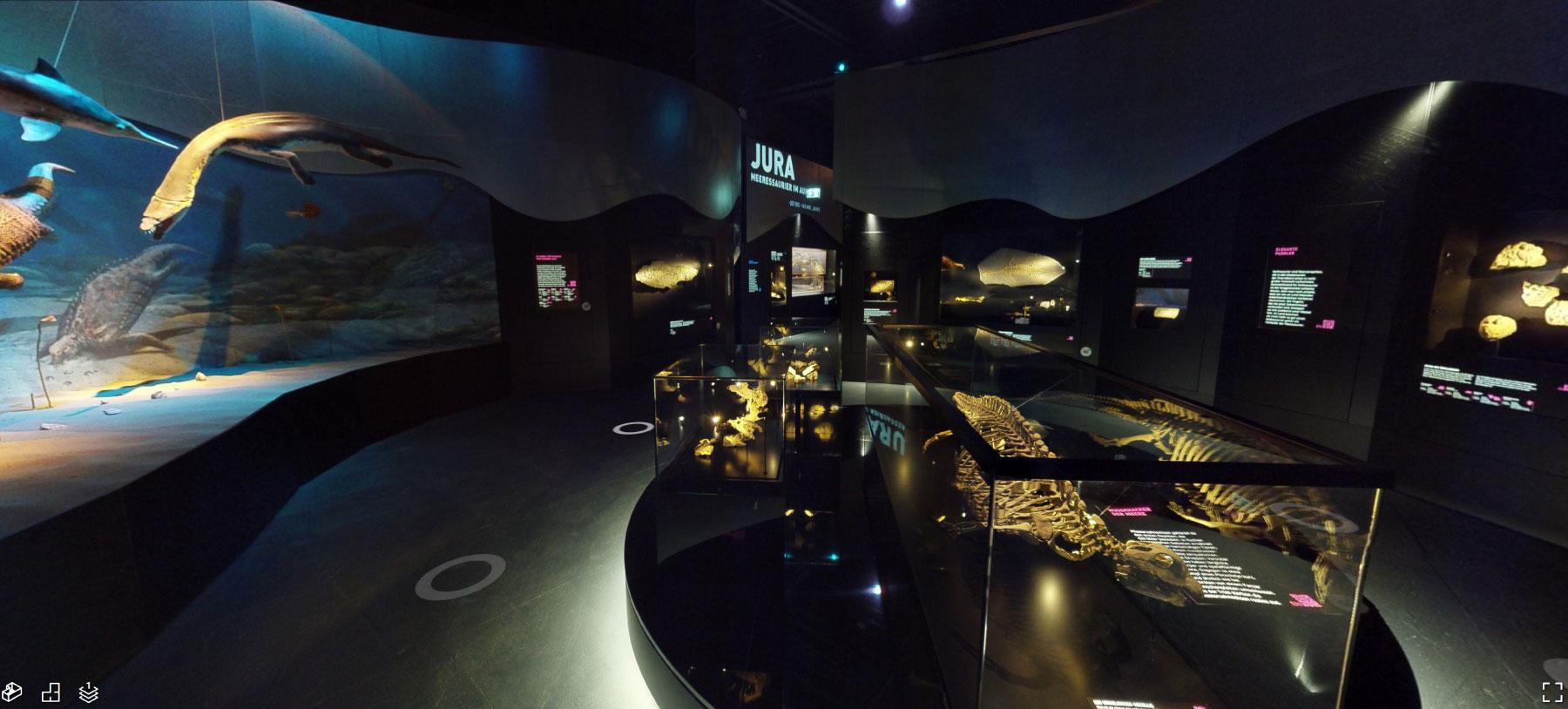 Museum-Giganten-der-meere